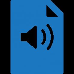 فایل صوتی مدیریت سرمایه